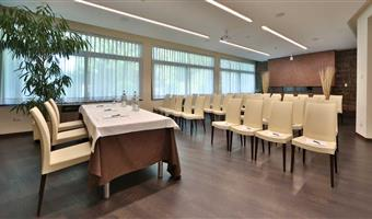 BEST WESTERN Hotel Cristallo - Rovigo - Meeting Room